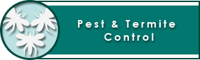 Insect & Pest Control