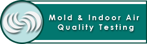 Mold & Indoor Air Quality Testing with the Home Inspector